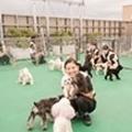トリマー、動物看護師を目指すなら! カコトリミングスクールの「体験セミナー」に参加しよう♪